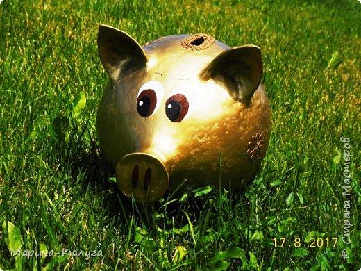 Доброго времени суток всем жителям Страны!Благодаря МК Наташи Грин у меня появилась такая свинка. фото 1