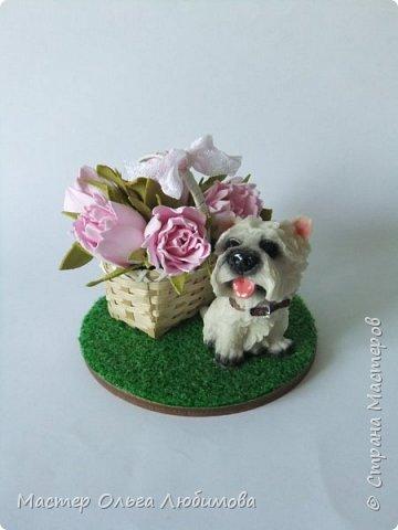 Сувенир на Год Собаки-маленькая собачка (всего 5 см) породы вест-хайленд-уайт-терьер. Настоящий подарок! Да еще с корзиной цветов, которые были сделаны из фоамирана. Вся миниатюра разместилась на круглой подставке, декорированной искусственной травой (имитация газона). Собачка будет радовать каждого круглый год!  фото 1