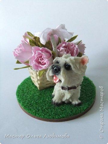Сувенир на Год Собаки-маленькая собачка (всего 5 см) породы вест-хайленд-уайт-терьер. Настоящий подарок! Да еще с корзиной цветов, которые были сделаны из фоамирана. Вся миниатюра разместилась на круглой подставке, декорированной искусственной травой (имитация газона). Собачка будет радовать каждого круглый год!  фото 2