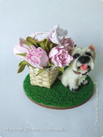 Сувенир на Год Собаки-маленькая собачка (всего 5 см) породы вест-хайленд-уайт-терьер. Настоящий подарок! Да еще с корзиной цветов, которые были сделаны из фоамирана. Вся миниатюра разместилась на круглой подставке, декорированной искусственной травой (имитация газона). Собачка будет радовать каждого круглый год!  фото 3