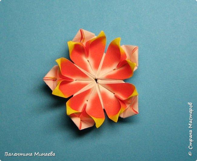 Всем привет! Даю небольшой МК как сделать модульные цветы для кусудам в виде сердечек.  Tornillo + flowers Name: Tornillo   Designer: Paolo Bascetta  Units: 30  Paper: 8,5 х 8,5  Final height: ~ 13,0 cm with glue  Lobivia flowers  Designer: Valentina Minayeva  Units: 60  Paper: 5,5 х 5,5  фото 44
