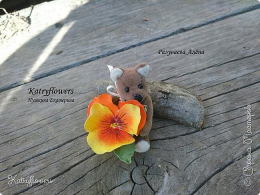 """Вот такой творческий тандем получился у меня и у моей подруги - http://stranamasterov.ru/user/297186. Её потрясающий Мишка и мое колечко- """"Анютина глазка"""". фото 3"""
