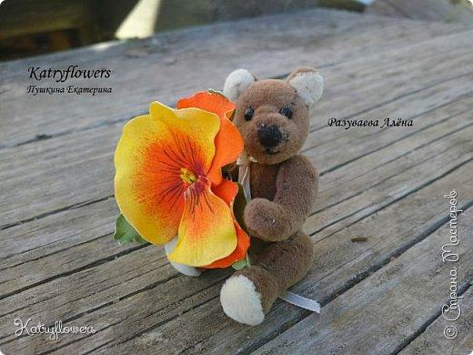 """Вот такой творческий тандем получился у меня и у моей подруги - http://stranamasterov.ru/user/297186. Её потрясающий Мишка и мое колечко- """"Анютина глазка"""". фото 5"""