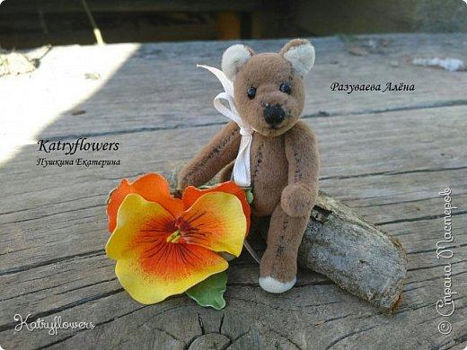 """Вот такой творческий тандем получился у меня и у моей подруги - http://stranamasterov.ru/user/297186. Её потрясающий Мишка и мое колечко- """"Анютина глазка"""". фото 6"""