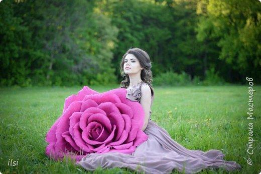 Работа прошлого года. Весной мало работы по оформлению свадеб, но рукам то хочется творить, хочется приблизить лето,  ярких красок и волшебства. Тогда и сотворились эти гигантики, 9 роз, диаметром от 70-ти и до 100 сантиметров.  фото 7