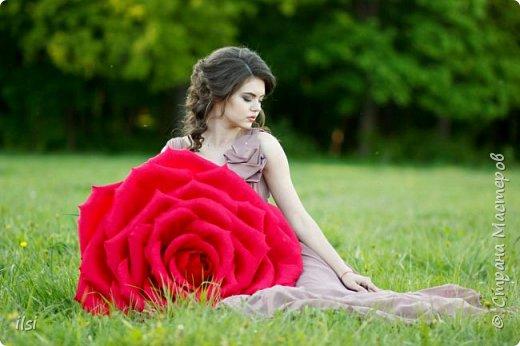 Работа прошлого года. Весной мало работы по оформлению свадеб, но рукам то хочется творить, хочется приблизить лето,  ярких красок и волшебства. Тогда и сотворились эти гигантики, 9 роз, диаметром от 70-ти и до 100 сантиметров.  фото 6