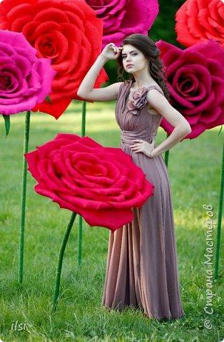 Работа прошлого года. Весной мало работы по оформлению свадеб, но рукам то хочется творить, хочется приблизить лето,  ярких красок и волшебства. Тогда и сотворились эти гигантики, 9 роз, диаметром от 70-ти и до 100 сантиметров.  фото 2