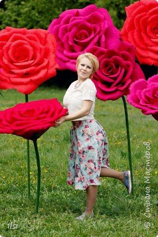 Работа прошлого года. Весной мало работы по оформлению свадеб, но рукам то хочется творить, хочется приблизить лето,  ярких красок и волшебства. Тогда и сотворились эти гигантики, 9 роз, диаметром от 70-ти и до 100 сантиметров.  фото 3