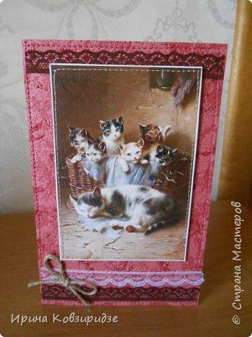"""""""Кошачья серия"""" Три открытки. Прострочены. Картинки- распечатка на лазерном принтере. Кружева. фото 2"""