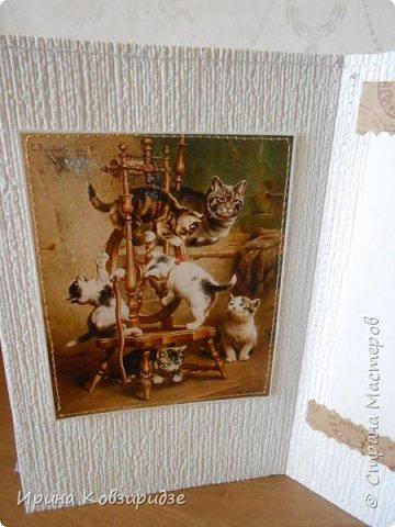 """""""Кошачья серия"""" Три открытки. Прострочены. Картинки- распечатка на лазерном принтере. Кружева. фото 5"""