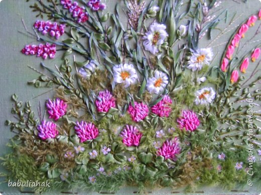 Полевые цветы. фото 4