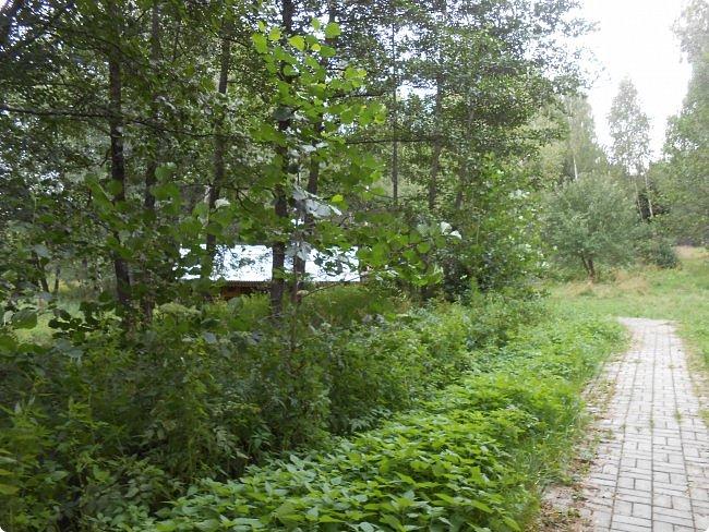 Пообещала я показать фотографии мест где мы проехали на велосипеде эти летом (наша местность) и нечаянно удалила фотографии с памяти фотоаппарата. Расстроилась конечно, но не надолго. Новых наснимаем. Вот уже и новые. Показываю. фото 13
