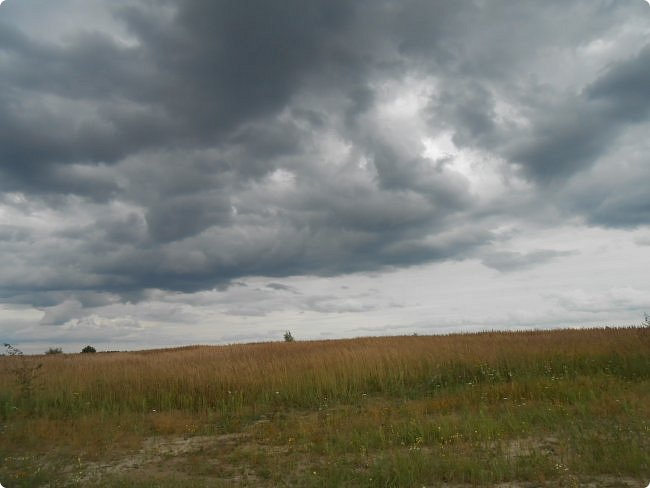 Пообещала я показать фотографии мест где мы проехали на велосипеде эти летом (наша местность) и нечаянно удалила фотографии с памяти фотоаппарата. Расстроилась конечно, но не надолго. Новых наснимаем. Вот уже и новые. Показываю. фото 25