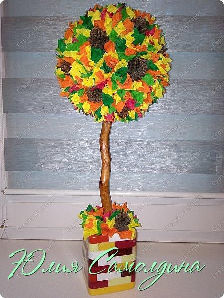 Гостям моей странички большой привет! Представляю на ваш суд новый топиарий с разноцветной листвой.  Он как солнышко,  выглянувшее из-за тучки в осенний день.   фото 6