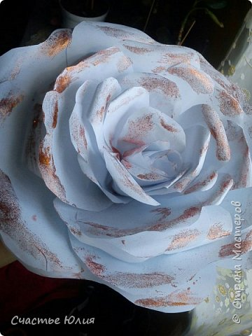 Большие розы для девичника фото 3