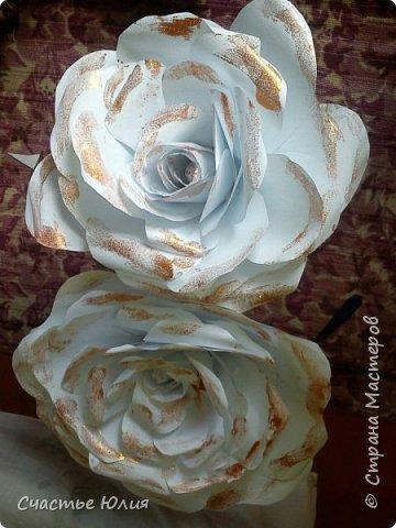 Большие розы для девичника фото 4