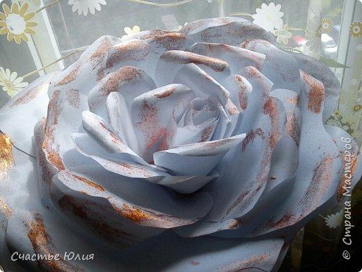 Большие розы для девичника фото 2