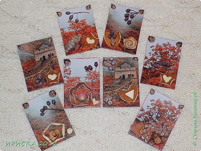 Привет всем гостям моей странички!!!  Осенние карточки задумывались совсем другие,  но захотели быть такими.  На мой взгляд они получились очень простенькими,  но вдруг кому-то понравятся.  Первыми к выбору приглашаю Элайджу,  Марию Соколовскую и Олечку, надеюсь что-то приглянется!!!  фото 19