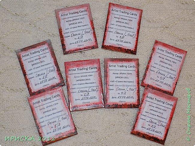 Привет всем гостям моей странички!!!  Осенние карточки задумывались совсем другие,  но захотели быть такими.  На мой взгляд они получились очень простенькими,  но вдруг кому-то понравятся.  Первыми к выбору приглашаю Элайджу,  Марию Соколовскую и Олечку, надеюсь что-то приглянется!!!  фото 18