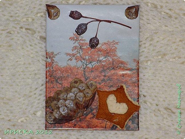 Привет всем гостям моей странички!!!  Осенние карточки задумывались совсем другие,  но захотели быть такими.  На мой взгляд они получились очень простенькими,  но вдруг кому-то понравятся.  Первыми к выбору приглашаю Элайджу,  Марию Соколовскую и Олечку, надеюсь что-то приглянется!!!  фото 4