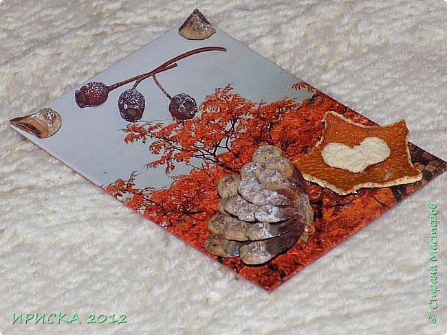 Привет всем гостям моей странички!!!  Осенние карточки задумывались совсем другие,  но захотели быть такими.  На мой взгляд они получились очень простенькими,  но вдруг кому-то понравятся.  Первыми к выбору приглашаю Элайджу,  Марию Соколовскую и Олечку, надеюсь что-то приглянется!!!  фото 5