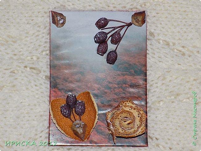 Привет всем гостям моей странички!!!  Осенние карточки задумывались совсем другие,  но захотели быть такими.  На мой взгляд они получились очень простенькими,  но вдруг кому-то понравятся.  Первыми к выбору приглашаю Элайджу,  Марию Соколовскую и Олечку, надеюсь что-то приглянется!!!  фото 6