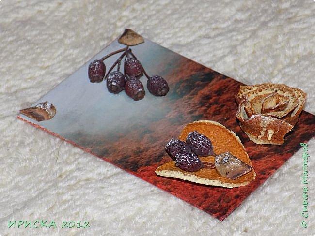Привет всем гостям моей странички!!!  Осенние карточки задумывались совсем другие,  но захотели быть такими.  На мой взгляд они получились очень простенькими,  но вдруг кому-то понравятся.  Первыми к выбору приглашаю Элайджу,  Марию Соколовскую и Олечку, надеюсь что-то приглянется!!!  фото 7