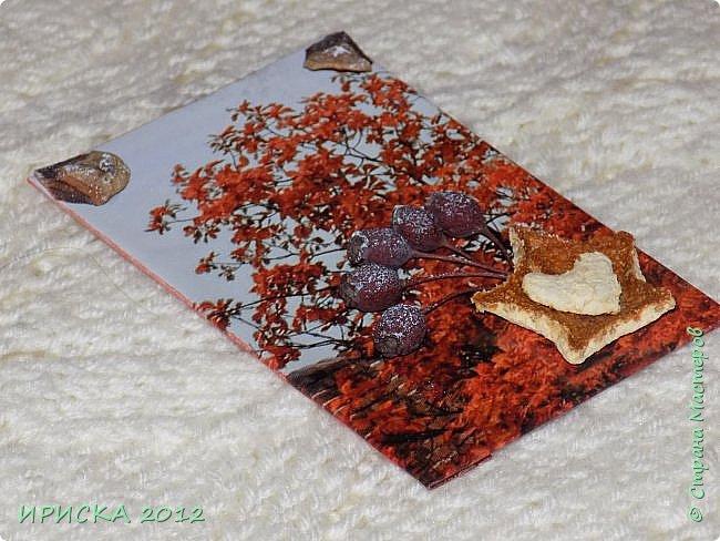 Привет всем гостям моей странички!!!  Осенние карточки задумывались совсем другие,  но захотели быть такими.  На мой взгляд они получились очень простенькими,  но вдруг кому-то понравятся.  Первыми к выбору приглашаю Элайджу,  Марию Соколовскую и Олечку, надеюсь что-то приглянется!!!  фото 9