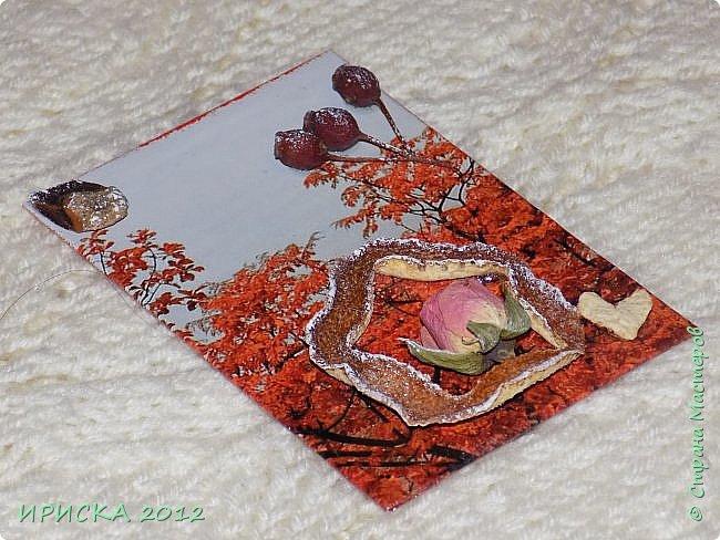 Привет всем гостям моей странички!!!  Осенние карточки задумывались совсем другие,  но захотели быть такими.  На мой взгляд они получились очень простенькими,  но вдруг кому-то понравятся.  Первыми к выбору приглашаю Элайджу,  Марию Соколовскую и Олечку, надеюсь что-то приглянется!!!  фото 13