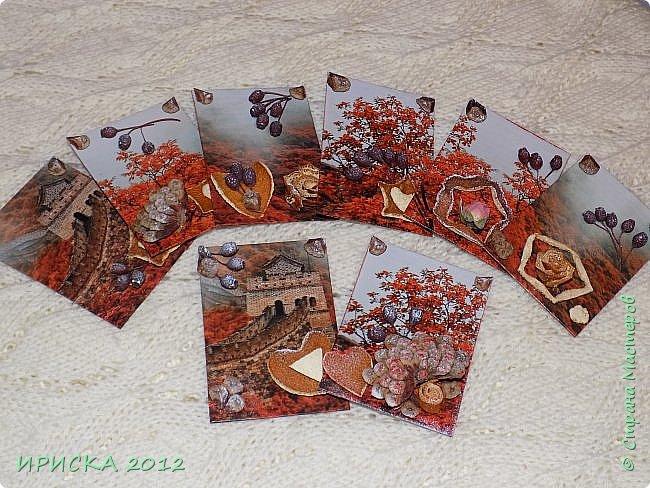 Привет всем гостям моей странички!!!  Осенние карточки задумывались совсем другие,  но захотели быть такими.  На мой взгляд они получились очень простенькими,  но вдруг кому-то понравятся.  Первыми к выбору приглашаю Элайджу,  Марию Соколовскую и Олечку, надеюсь что-то приглянется!!!  фото 1