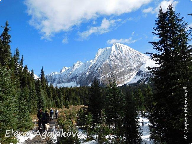 В воскресенье выбрались в горы, там уже начало порошить снежком, так что последний шанс поймать краски осени и не замерзнуть... фото 5