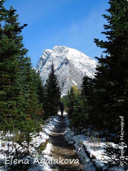 В воскресенье выбрались в горы, там уже начало порошить снежком, так что последний шанс поймать краски осени и не замерзнуть... фото 6