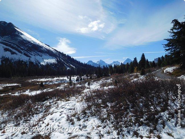 В воскресенье выбрались в горы, там уже начало порошить снежком, так что последний шанс поймать краски осени и не замерзнуть... фото 18