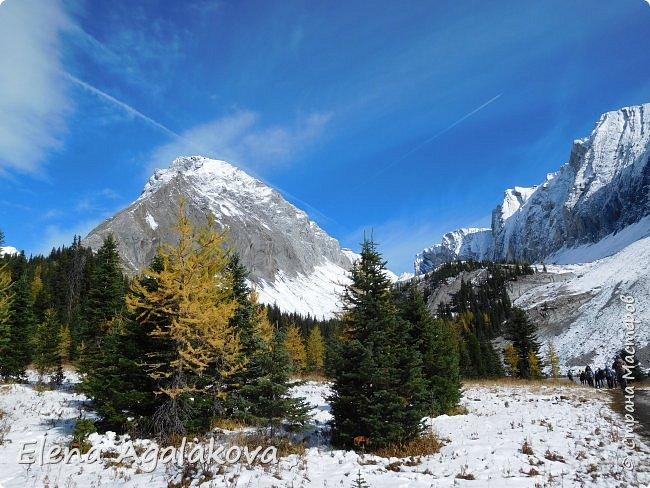 В воскресенье выбрались в горы, там уже начало порошить снежком, так что последний шанс поймать краски осени и не замерзнуть... фото 8