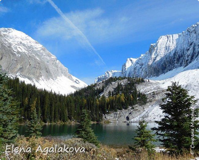 В воскресенье выбрались в горы, там уже начало порошить снежком, так что последний шанс поймать краски осени и не замерзнуть... фото 9