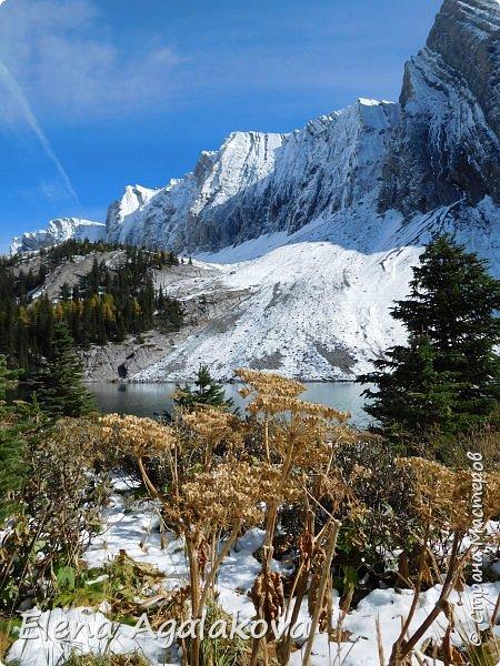 В воскресенье выбрались в горы, там уже начало порошить снежком, так что последний шанс поймать краски осени и не замерзнуть... фото 23