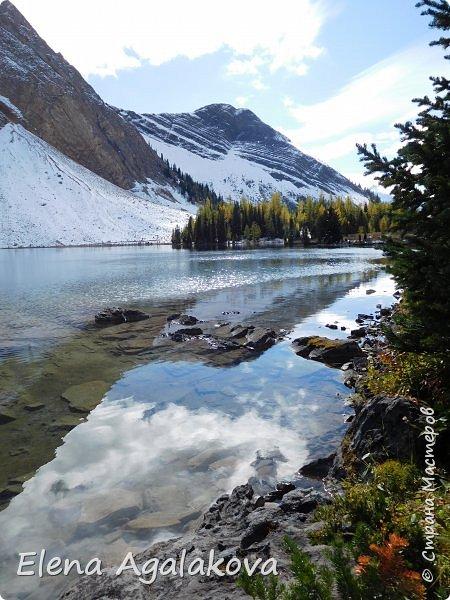 В воскресенье выбрались в горы, там уже начало порошить снежком, так что последний шанс поймать краски осени и не замерзнуть... фото 10