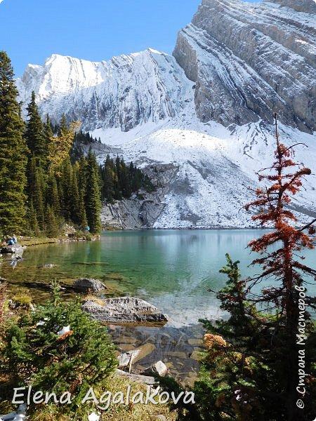 В воскресенье выбрались в горы, там уже начало порошить снежком, так что последний шанс поймать краски осени и не замерзнуть... фото 12