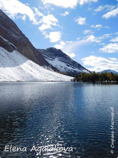В воскресенье выбрались в горы, там уже начало порошить снежком, так что последний шанс поймать краски осени и не замерзнуть... фото 14
