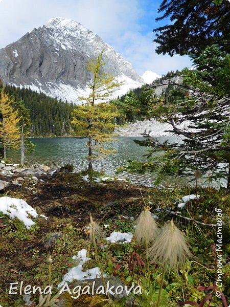 В воскресенье выбрались в горы, там уже начало порошить снежком, так что последний шанс поймать краски осени и не замерзнуть... фото 17