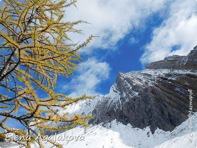 В воскресенье выбрались в горы, там уже начало порошить снежком, так что последний шанс поймать краски осени и не замерзнуть... фото 20