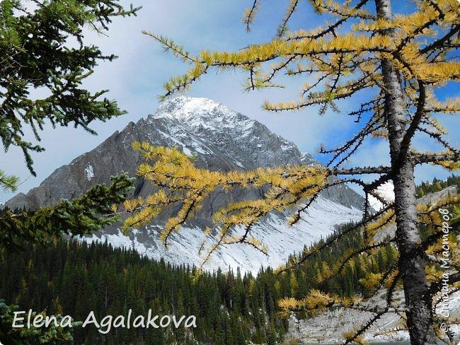 В воскресенье выбрались в горы, там уже начало порошить снежком, так что последний шанс поймать краски осени и не замерзнуть... фото 24