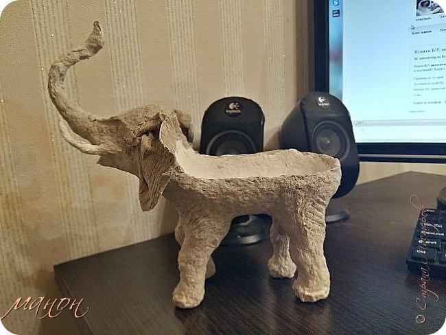 слон фото 7