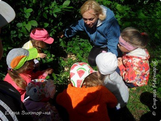 Наши экскурсии! летние впечателения! фото 12