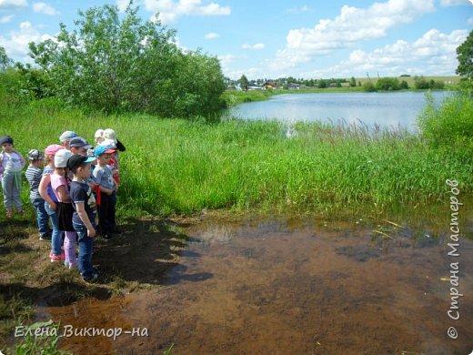 Наши экскурсии! летние впечателения! фото 4