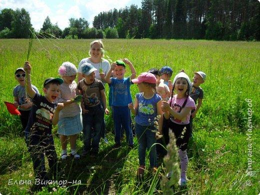 Наши экскурсии! летние впечателения! фото 11