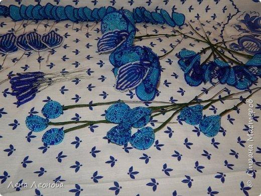 Сине - голубая орхидея. фото 14