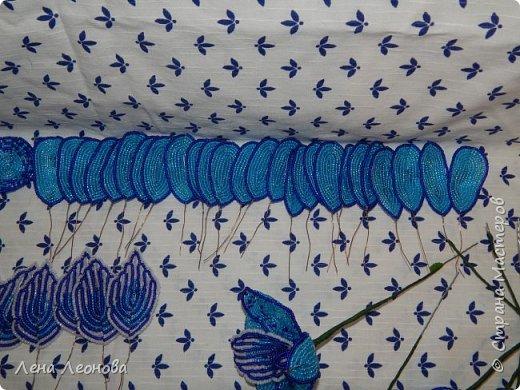 Сине - голубая орхидея. фото 12