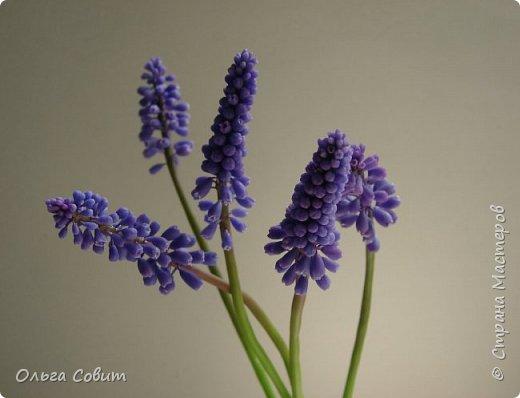 Цветы. Холодный фарфор фото 7