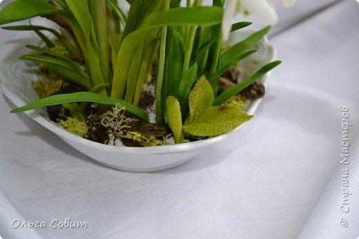 Цветы. Холодный фарфор фото 4
